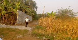 Plots for sale in Nakulabye at shs 900,000,000