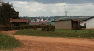 Plots for sale in Mukono Nantabulirirwa at shs 250,000,000