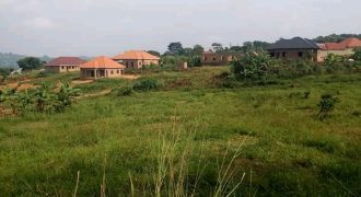 Plots for sale in Kikyusa Kamira at 6,000,000