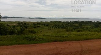 Plots for sale in Buikwe at shs 4,500,000