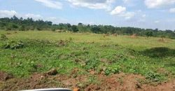 Plots for sale in Zirobwe at shs 7,000,000