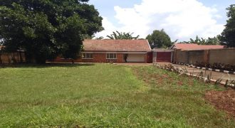 4 Bed 2 Bath House for Rent in Jinja Town