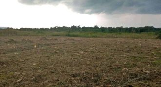 Plots for sale in Kisaasi Bahai round about at shs 270,000,000