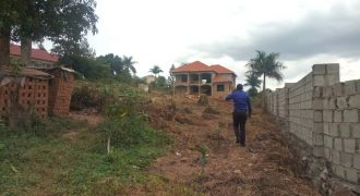 Plots for sale in Nakwero at shs 150,000,000