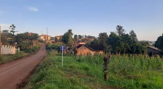 67.5 Decimals of Residential Land for Sale in Jinja