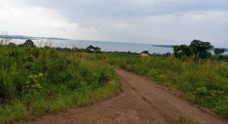 Plots for sale in Zziba at shs 20,000,000