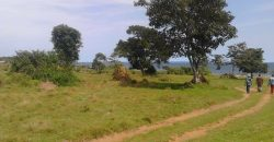 Plots for sale in Mukono Mbalala at shs 35,000,000