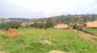 Plots for sale in Kira Kasangati road at shs 135,000,000