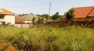 Plots for sale in Busiika Kalagala road at shs 6,500,000