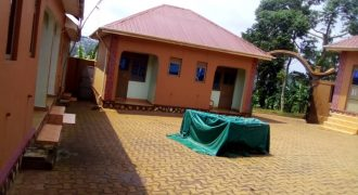 Hostels for sale in Mukono University at shs 500,000,000