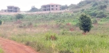 Plots for sale in Kitende Nalubudde Entebbe road at shs 29,000,000