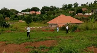 Plots for sale in Matugga Gombe at shs 20,000,000