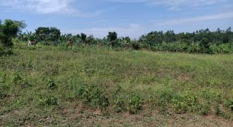 Plots for sale in Gayaza Kiwenda at shs 16,000,000