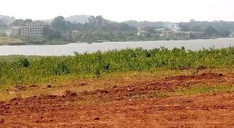 Plots for sale in Nkumba at shs 43,000,000