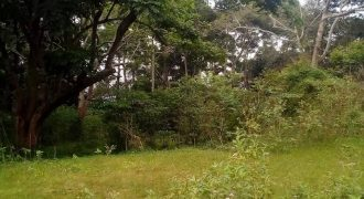 Plots for sale in Bukasa Bugiri at shs 280,000,000