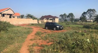 Plots for sale in Wakiso Sala at shs 22,000,000