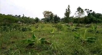 Plots for sale in Namasumbi at shs 4,000,000