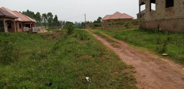 Plots for sale in Seeta Bajjo at shs 45,000,000