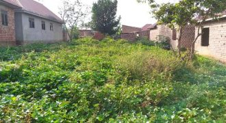 Plots for sale in Kungu at shs 70,000,000