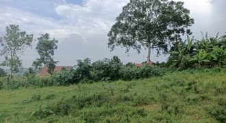 Plots for sale in Wakiso Nkoowe at shs 25,000,000