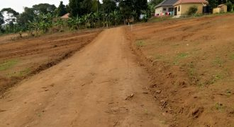 Plots for sale in Mukono Global at shs 27,000,000