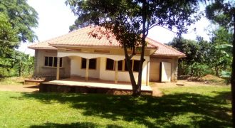 House for sale in Mukono Kabembe at shs 75,000,000