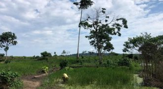 Jana Island for sale in Entebbe at shs 8,000,000