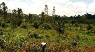 Plots for sale in Mukono at shs 2,500,000,000