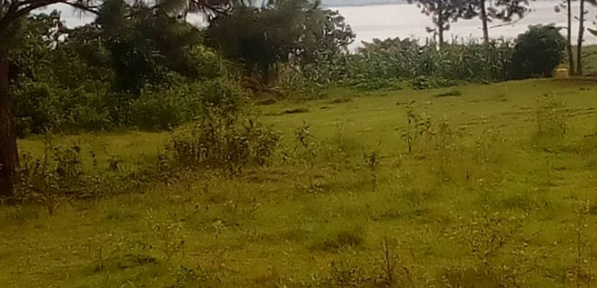 Plots for sale in Ndejje Luweero District at shs 25,000,000