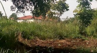 Plots for sale in Mukono park at shs 66,000,000