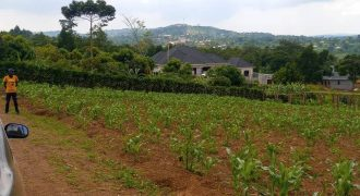 Plots for sale in Kateera at shs 3,500,000