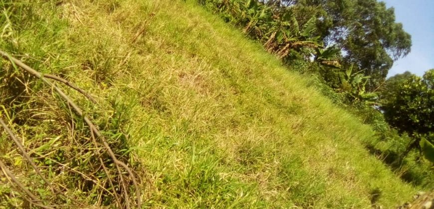 Plots for sale in Mukono Kabembe at shs 40,000,000