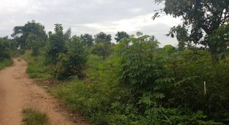 Plots for sale in Kawoko at shs 40,000,000