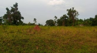 Plots for sale in Kiteezi T shs 45,000,000
