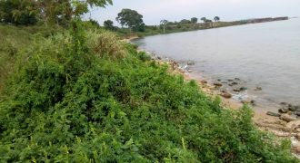 Plots for sale in Kiryandongo at shs 3,000,000
