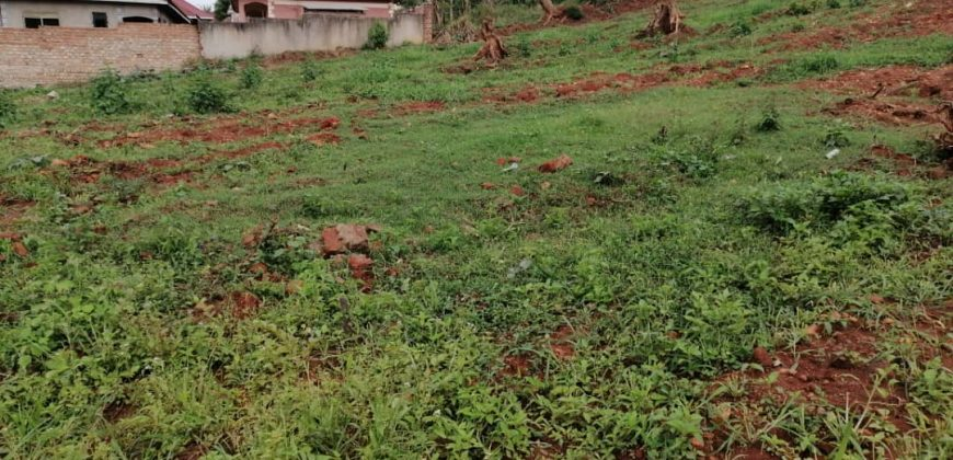 Plots for sale in Mukono Wantone at shs 300,000,000