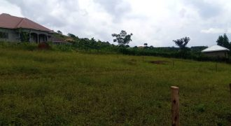 Plots for sale in Kisaasi Dungu zone at shs 210,000,000