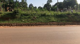 Plots for sale in Ntinda Kigowa at shs 280,000,000