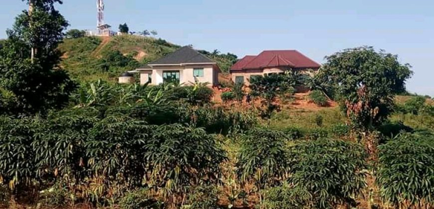 Plots for sale on Mutungo hill at shs 1,000,000,000