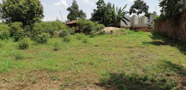 Plots for sale in Kungu at shs 135,000,000