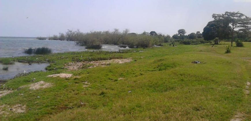 Plots for sale in Wakiso Nkowe at shs 30,000,000