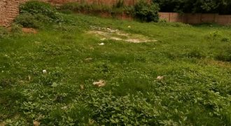 Plots for sale in Kiwenda Guluddene at shs 22,000,000