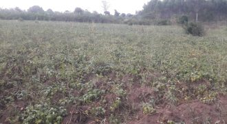 Plots for sale in Gombe Semuto road at shs 11,000,000