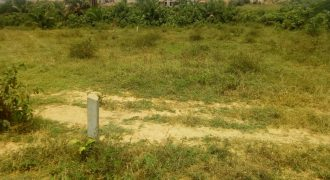 Plots for sale in Lweza Entebbe at shs 250,000,000