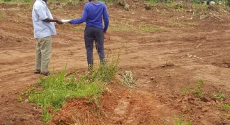 Plots for sale in Kabanyoro at shs 45,000,000