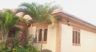 House for sale in Namugongo Sonde at shs 350,000,000