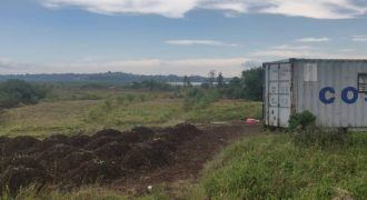 Plots for sale in Lutembe at shs 320,000,000