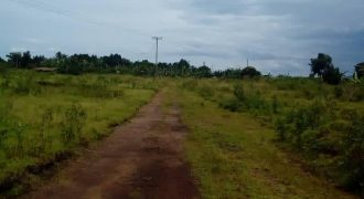 Plots for sale in Ssazzi Buwaya Entebbe road at shs 100,000,000