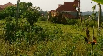 Plots for sale in Namaiba at shs 40,000,000