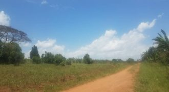 Plots for sale in Kasayi at shs 110,000,000